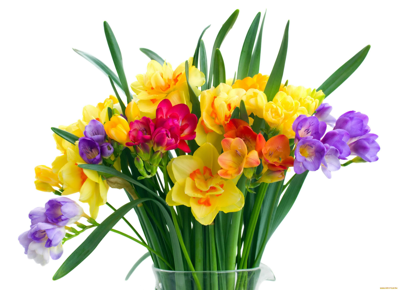 периодически картинки цветов весенних букетов цветов того